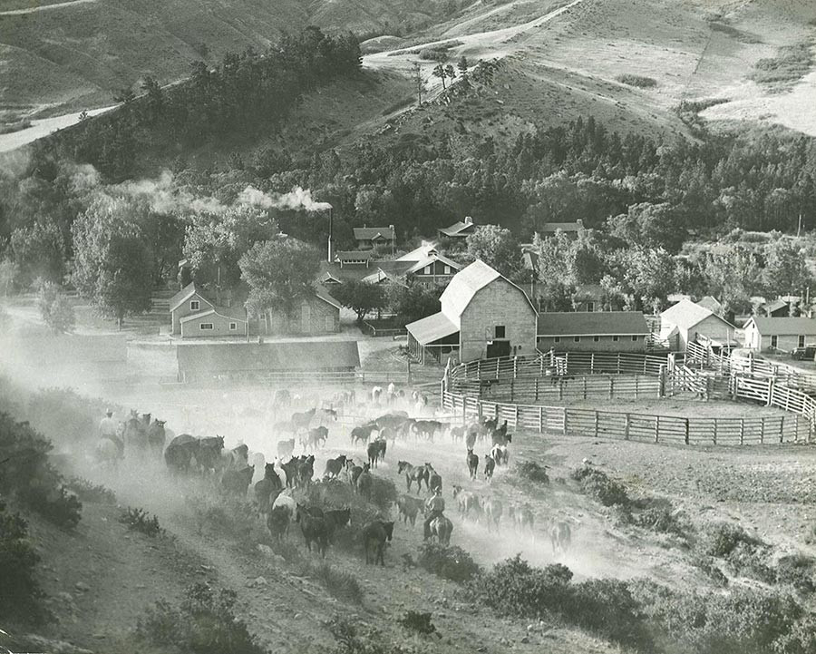 Old Photo of Eatons' Ranch