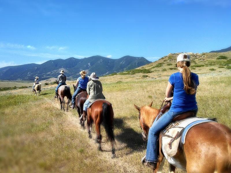 group Horseback Riding in Wyoming