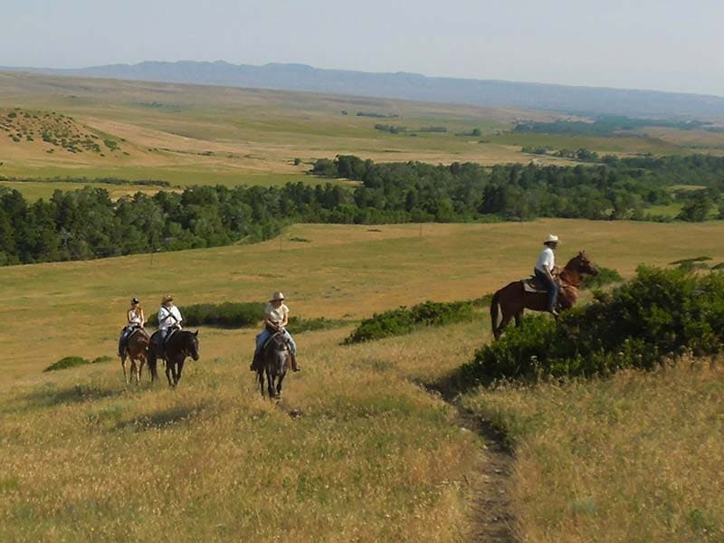 group Horseback Riding in Wyoming