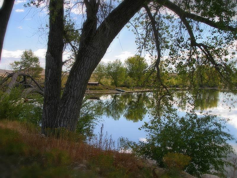 fishing lake at Eatons