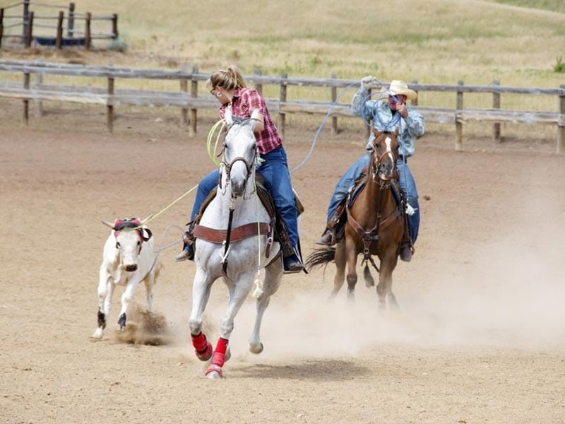 wyoming things to do: rodeo!