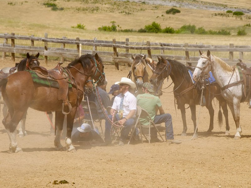 Wyoming summer vacation rodeo